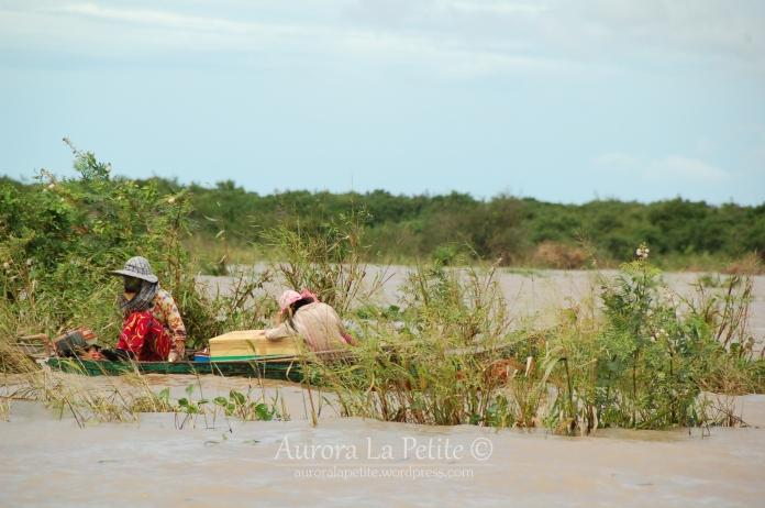 Tonle Sap Boats